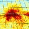 Nitrogen dioxide over Siberian pipelines