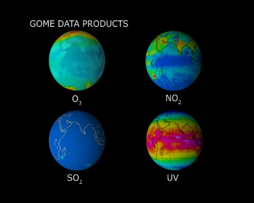 GOME Data Products