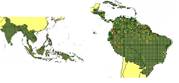 Available products in TropForest dataset map